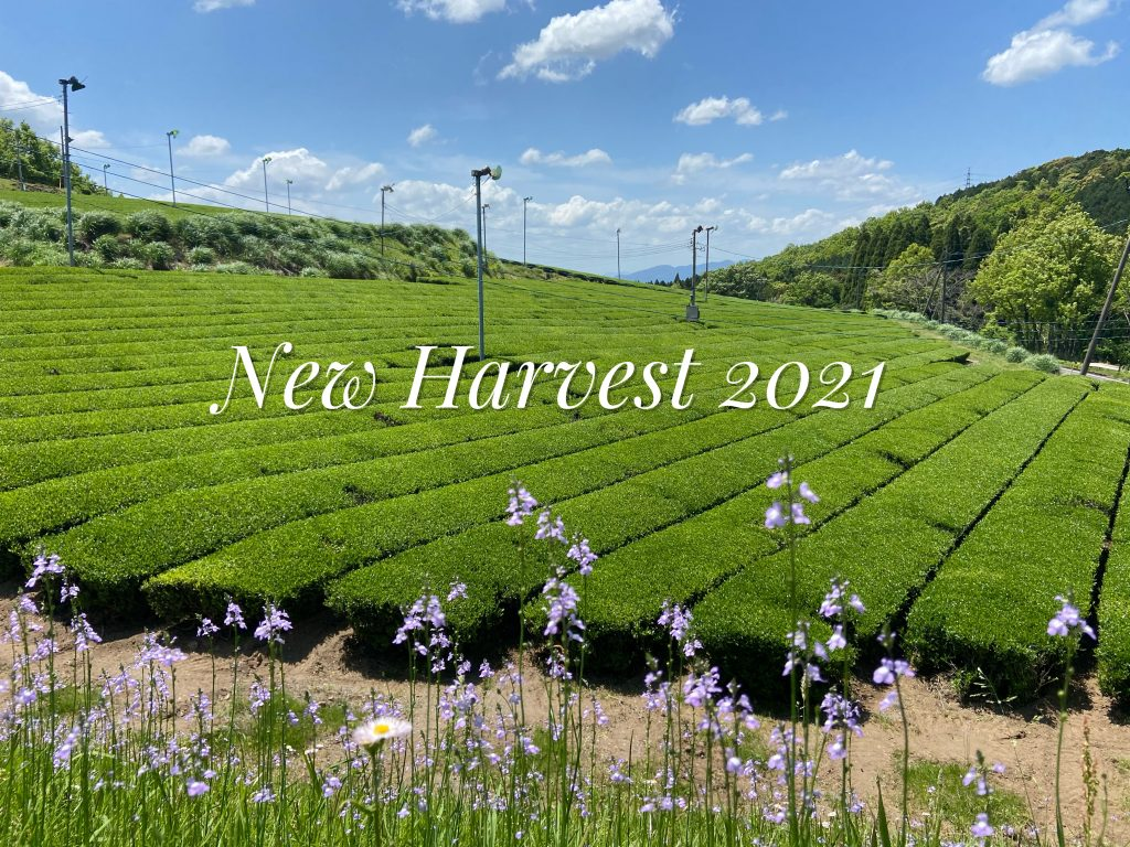 Happy New Tea Harvest 2021