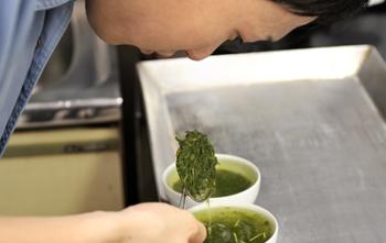 鹿児島製茶 お茶へのこだわり ブレンド